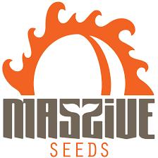 Massive Seeds